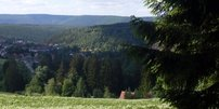 Klimaurlaub im Oberharz