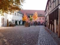Cranach pur in der Lutherstadt Wittenberg