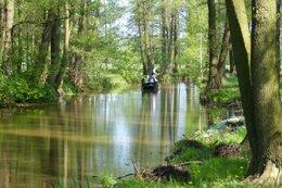 Spreewald Natur Pur
