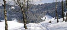 Winterspaß in Wildemann