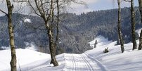 Heilstollen-Schnuppern im Oberharz